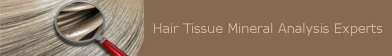 Hair Tissue Mineral Analysis – Hair Test Experts